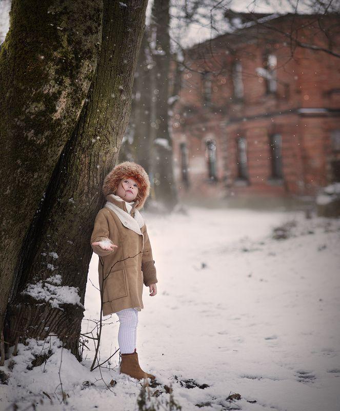 В ожидании зимыphoto preview