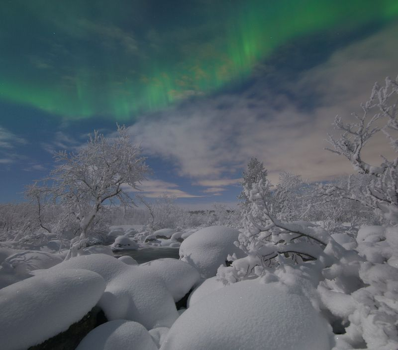 Лунная морозная ночьphoto preview