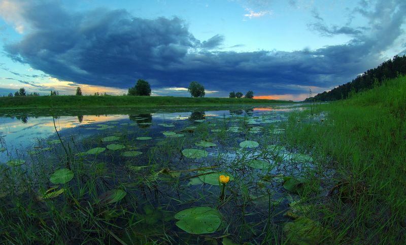 летний вечер, прошла гроза, смеркалось Летний вечерphoto preview