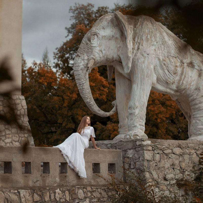 девушка, дом, мистика, архитектура, модерн, призрак, girl, mystic, ghost, house House with elephantsphoto preview