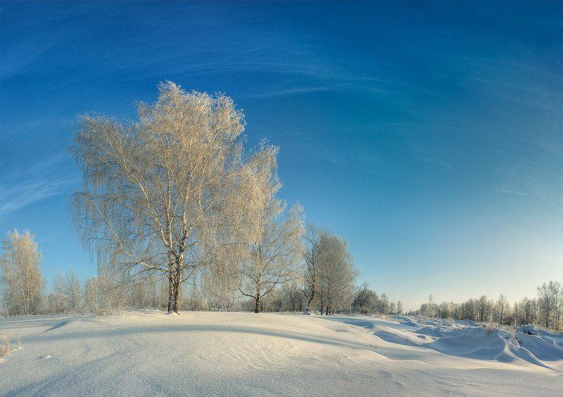 мороз, иней, зима, снег серебро #2photo preview