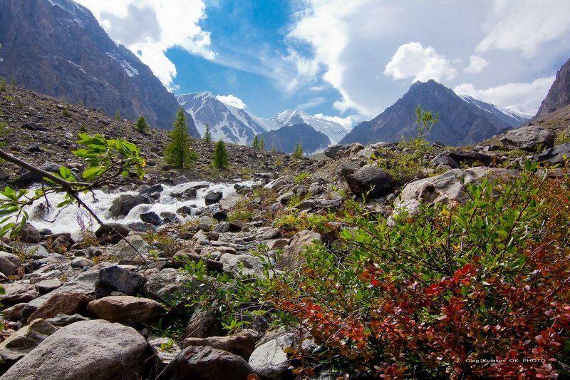 ущелье актру,горный алтай,горы В ущелье Актру.**photo preview