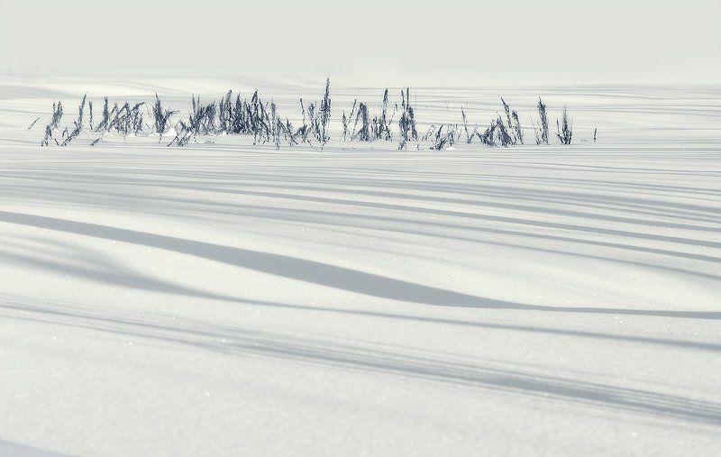 зима Зимняя, медитативнаяphoto preview