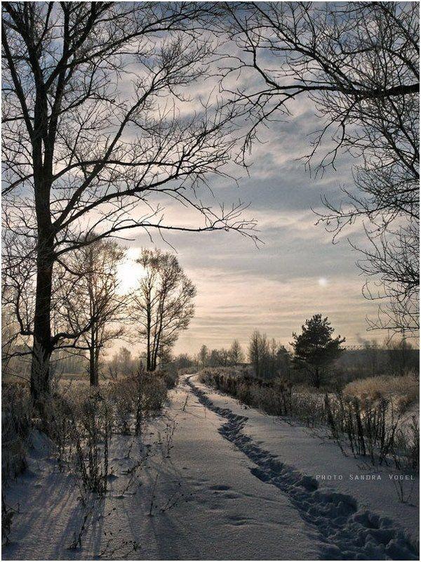 зима, снег, мороз, тверь К снежному закатуphoto preview