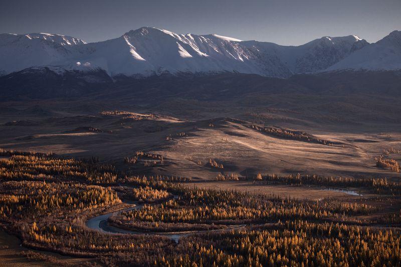 горный алтай, чуя, курай, северо-чуйский хребет, горы, лиственницы, осень, октябрь Курайский вечерокphoto preview