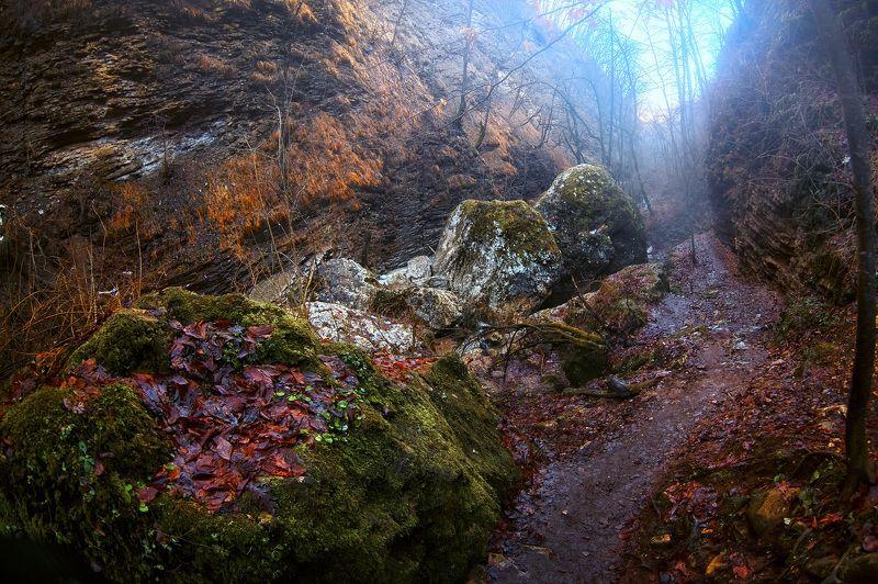 Тропа в Белогорьеphoto preview