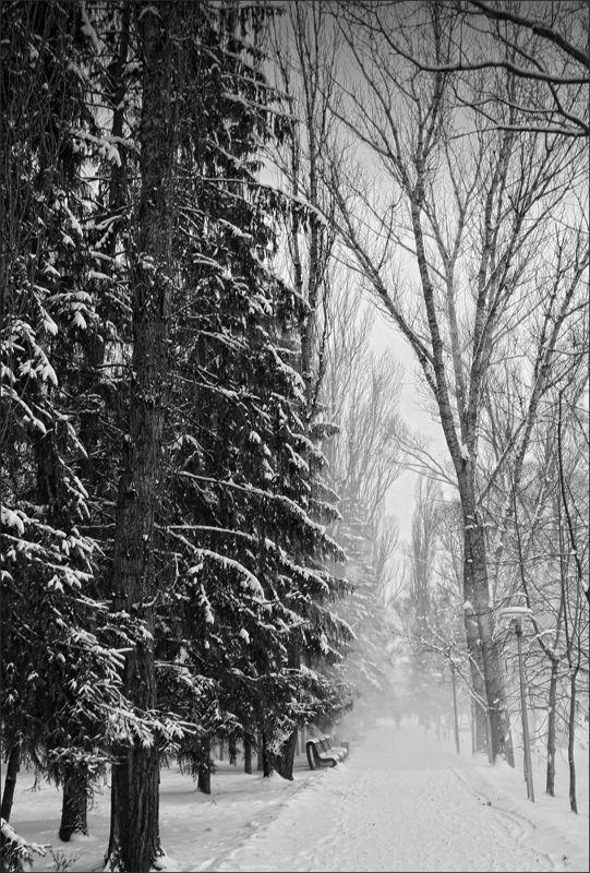 ---= зимняя =---photo preview