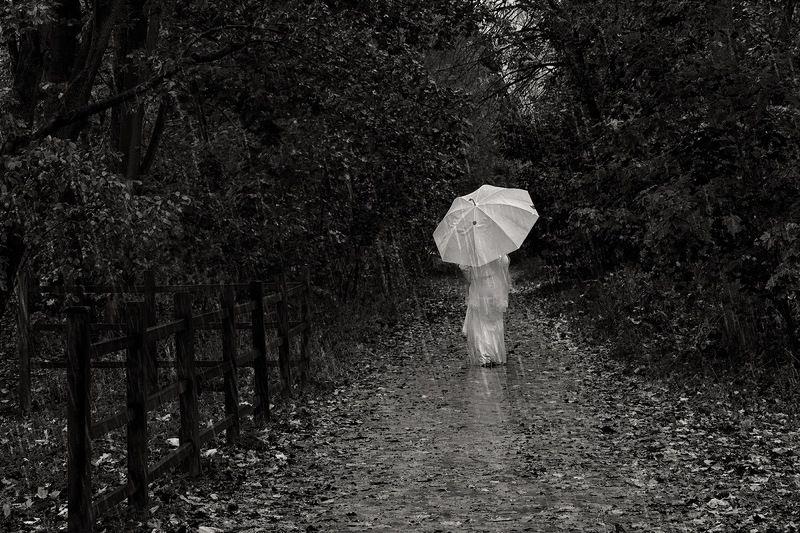 черно-белое, зонт, дождь, девушка, парк, black-white Она уходила...photo preview