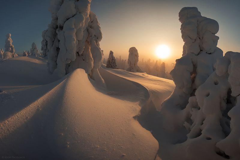 пейзаж, закат, зима, кольскийполуостров Январь в сопках Кольского полуостроваphoto preview