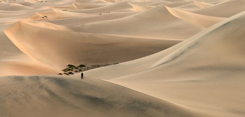 Death Valley, Sand Dunes, Photographer, Sunrise, Sunset, Epic, Dramatic, Curves,  The Viewfinderphoto preview