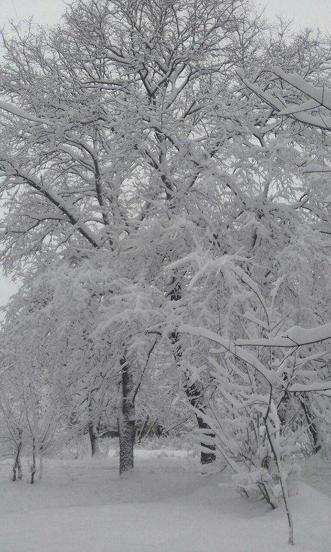 наконец то зима! в Москвеphoto preview