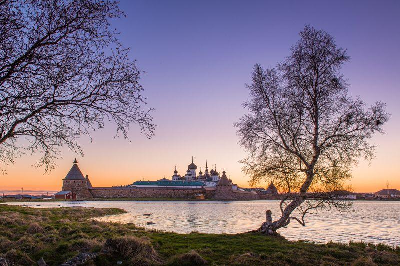 Соловки белые ночи Соловецкий монастырь  Белые ночи на Соловках photo preview
