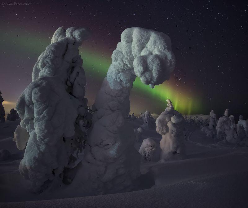 кандалакша, кольскийполуостров, северноесияние, пейзаж, зима Вечер в сопках Кандалакшиphoto preview