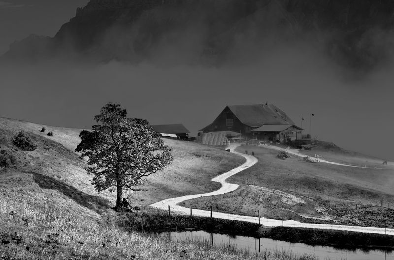 switzerland, alps. photo preview