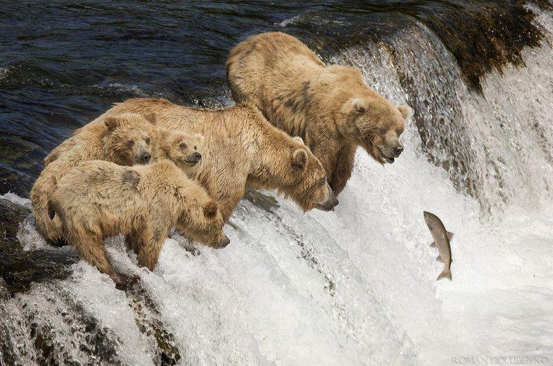 Семейная рыбалкаphoto preview