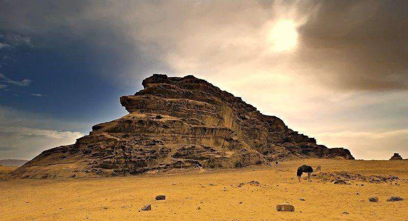 бедуины, пустыня, иордания, солнце под солнцем Иордании...photo preview