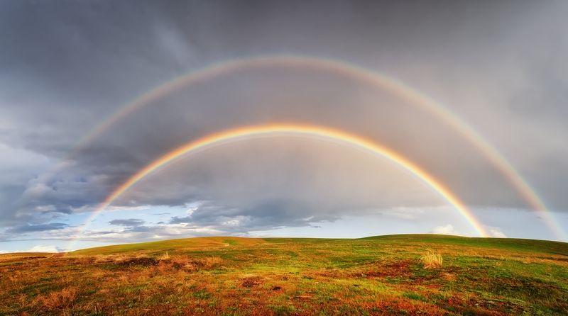 киргизия в полях Киргизии после дождяphoto preview