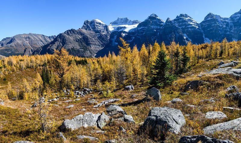 Канада, Скалистые горы, Банф, осень Осень в горахphoto preview