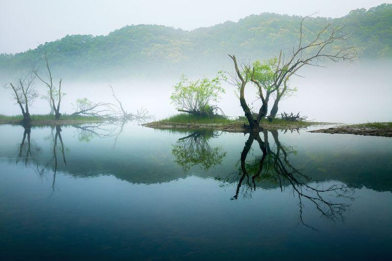 landscape Dreams of Greenphoto preview
