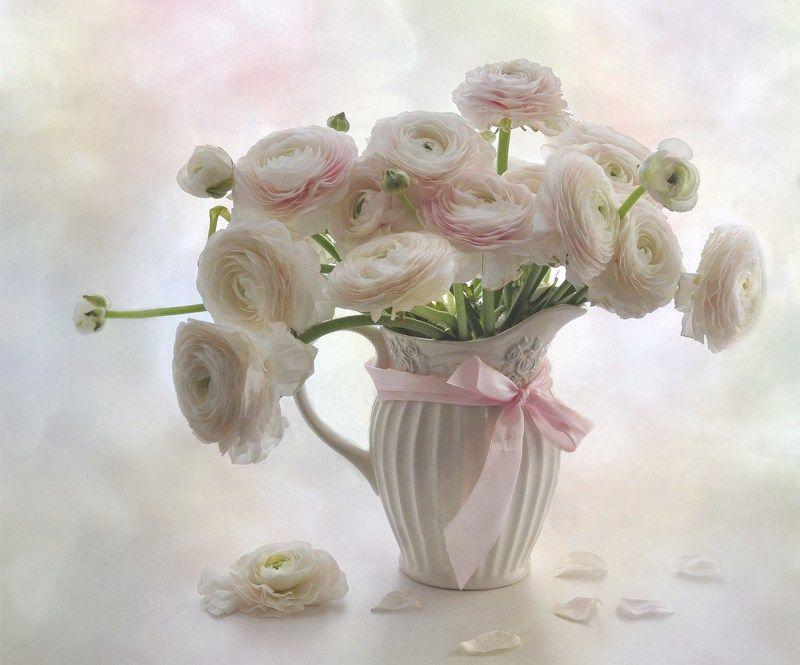 весна лютики цветы нежность букет семь дней до весны...photo preview