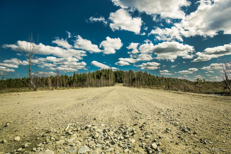 #photobydmitrygorkovets #landscapes #karelia #road Road. Дорога.photo preview