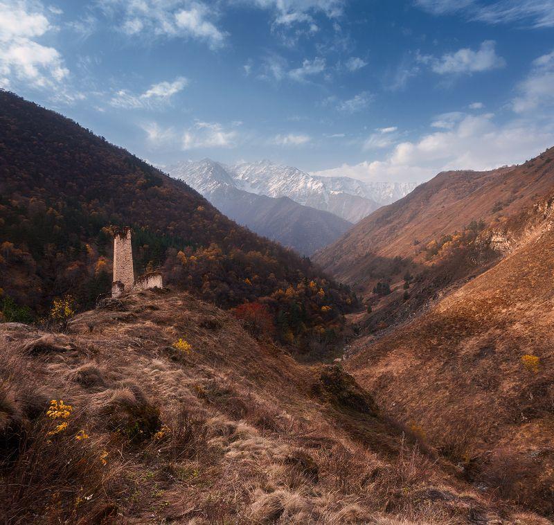 Цори, Заповеник «Эрзи», Ингушетия photo preview