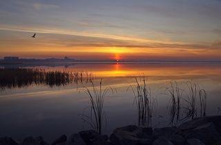 Ранее утро на озере Смолино