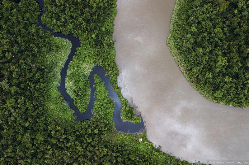 papua, jungle, indonesia, brazza, river, папуа, джунгли, река, индонезия Папуа с высоты птичьего полетаphoto preview