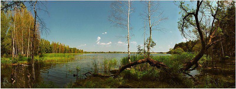 лето, природа, пейзаж, панорама, озеро Остров \