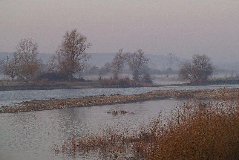 весна, утро, туман \