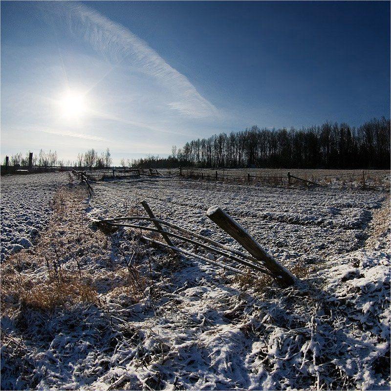 зима, снег, солнце, лес, тени *photo preview
