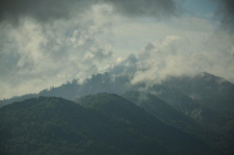 Transylvanian dreamsphoto preview