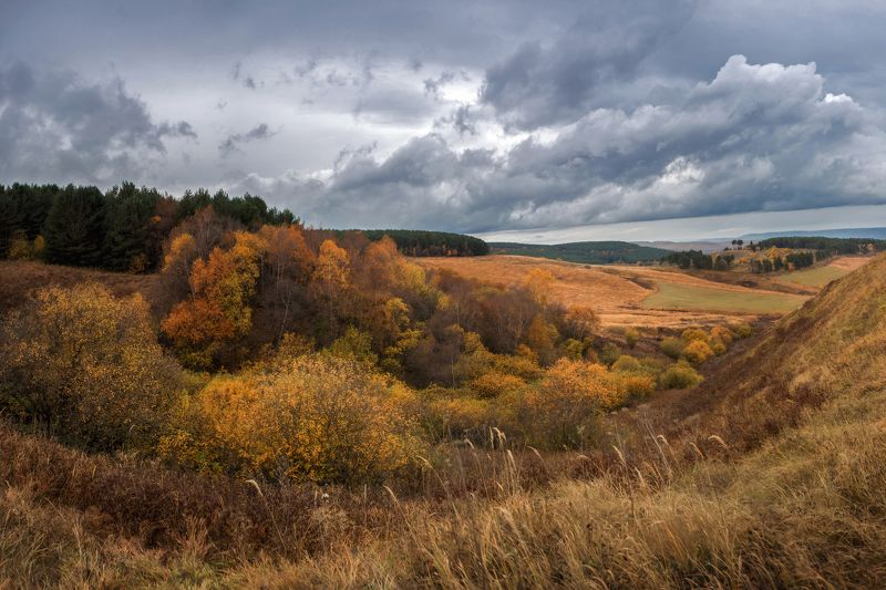 осень , кисловодск , Осень ...photo preview