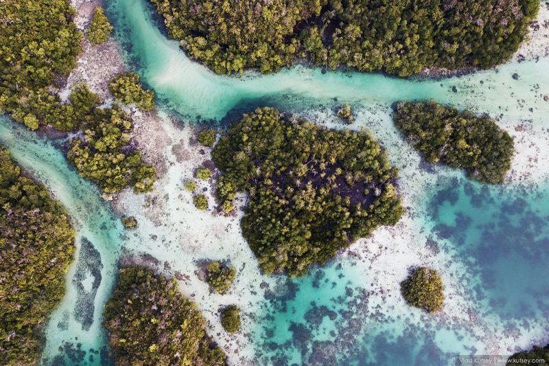 папуа, дрон, западная_папуа, джунгли, westpapua, west_papua, insonesia, индонезия West Papuaphoto preview