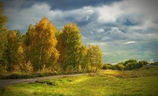 Задумчивая осень...