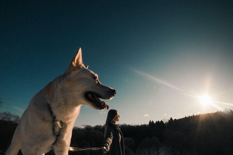 собака, человек фотосьемка, весна, портрет Любишь собаку любить,  люби и гулять с ней ходить. :)photo preview