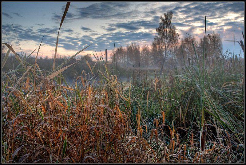 Отшумела осень золотая 2photo preview