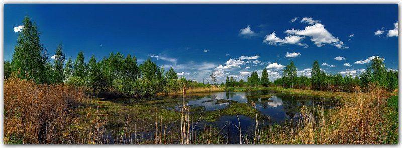весна, природа, пейзаж, панорама Был месяц май...photo preview