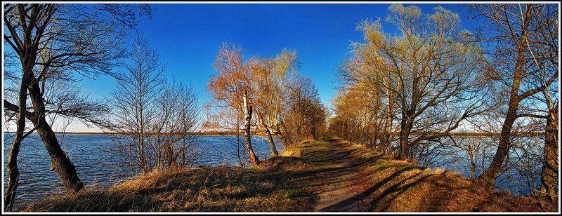 зима, природа, пейзаж, панорама, озеро По дороге теней...photo preview
