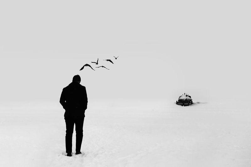 вороны, мысли, без конца, бесконечность, лодка, снег, зима, взморье, юрмала, минимализм Бесконечностьphoto preview