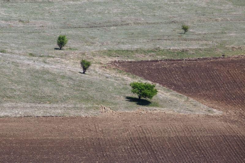 карачаево-черкесия,кчр, поле  , природа  , геометрия Минимализм-photo preview