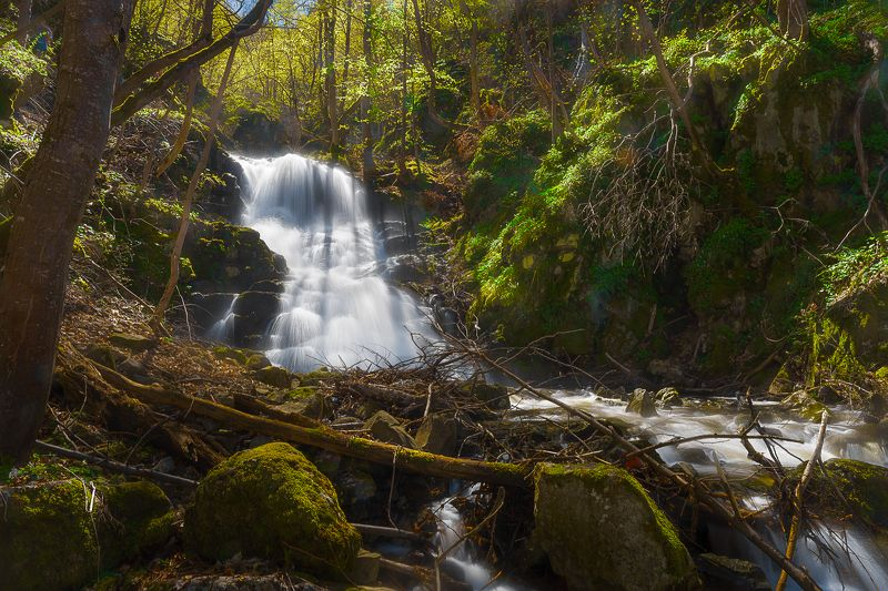 Към Боянския водопадphoto preview