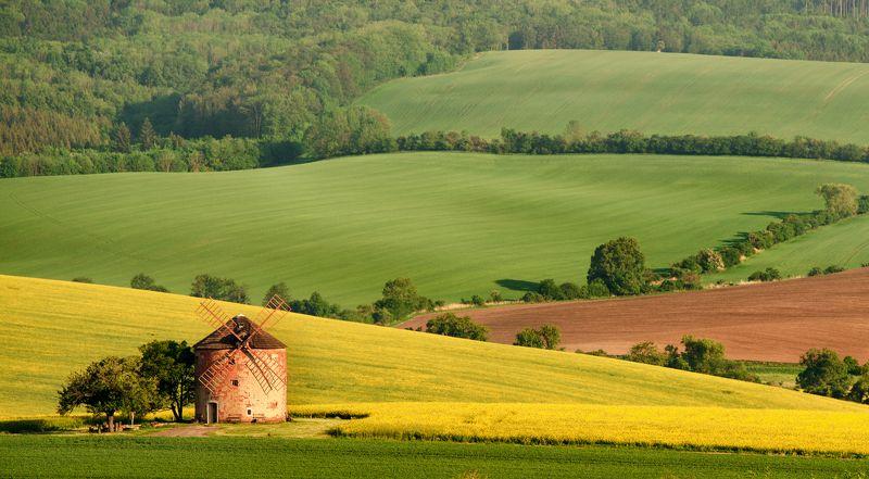 tuscony, moravia, nature, nikon Moravia Tusconyphoto preview