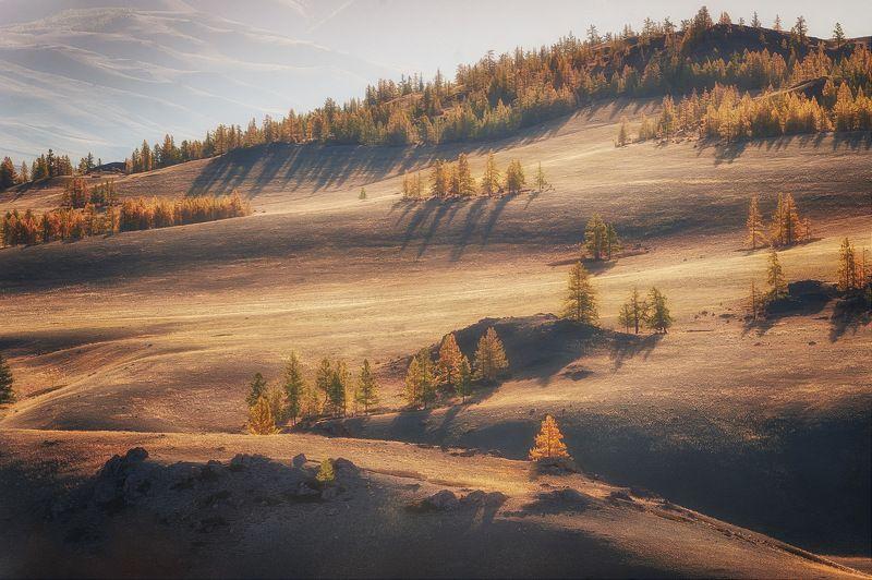 алтай курайская степь осень утро Утро в степиphoto preview