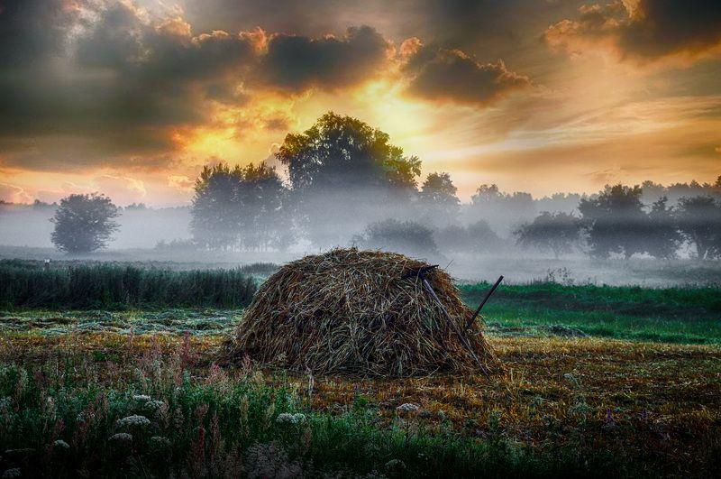 утро, туман, деревня, природа Раннее утроphoto preview