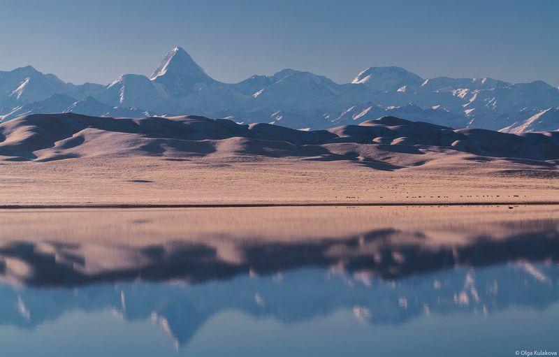тузколь, озеро, тянь-шань, утро, горы, рассвет, осень, пик хан-тенгри, пик победы Осеннее утро на озере Тузкольphoto preview