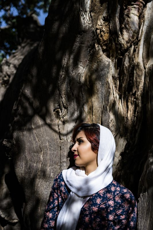 #tree #portrait  old treephoto preview