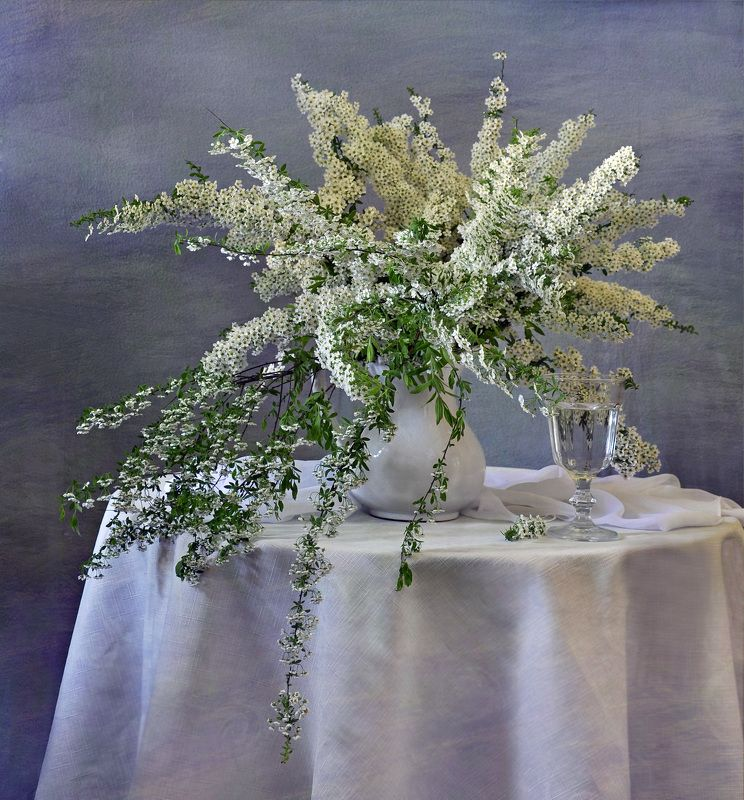 лето, цветы, спирея, натюрморт, букет Белая спирея 2photo preview