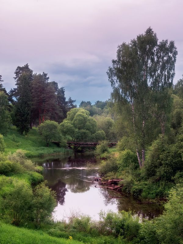 река, черемуха, вечер, лето, зелень, мост Речушкаphoto preview