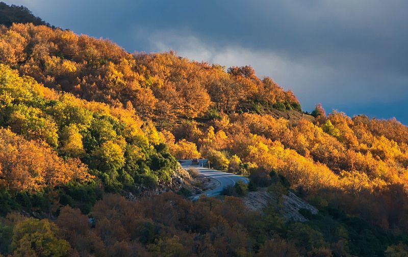 Landscape Autumn colorsphoto preview